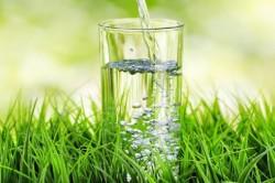 Травяной настой для полоскания горла