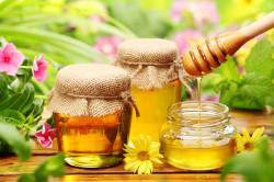 Лечение тонзиллита медом