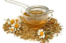 Травяные отвары для лечения простуды